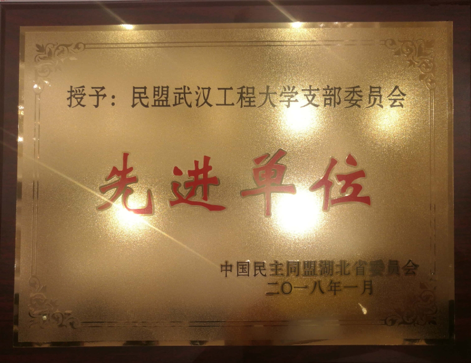 民盟武汉工程大学支部委员会获湖北省民盟先进单位